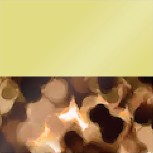 Lemon Ice & Butterscotch Tortoise with Brown Polarized Lenses